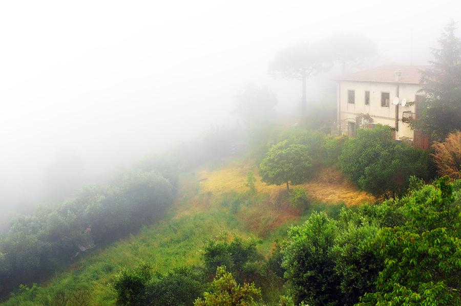 Туманная Тоскана